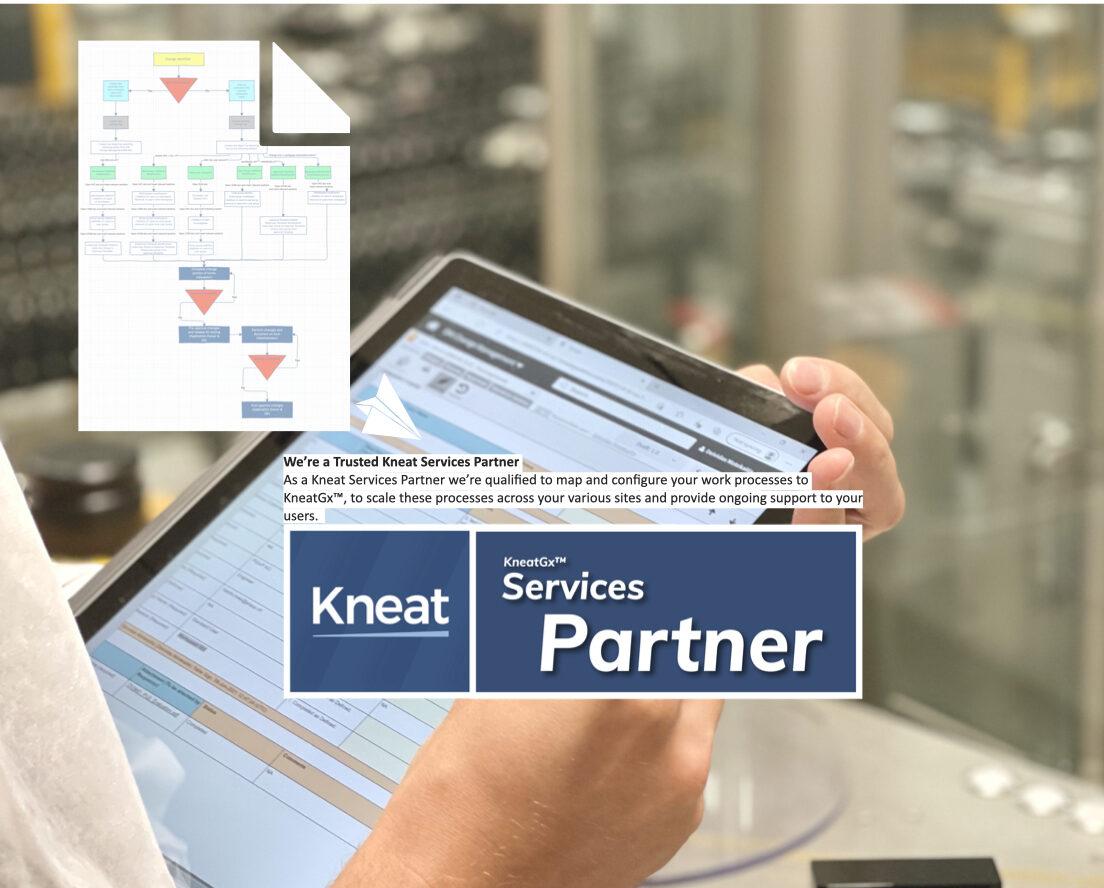 Digitalization of Business Processes